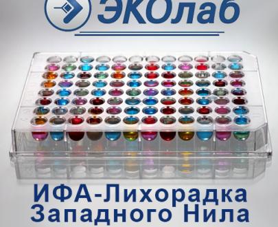 ИФА-ЗН-антиген