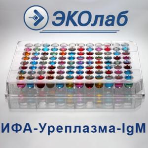 ИФА-Уреплазма-IgМ