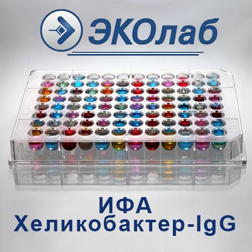 ИФА-Хеликобактер-IgG
