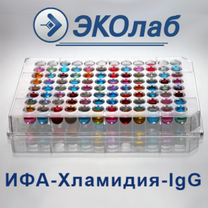 ИФА-Хламидия-IgG