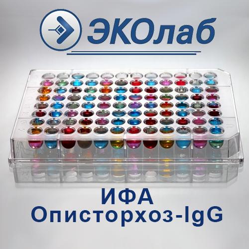 ИФА-Описторхоз-lgG